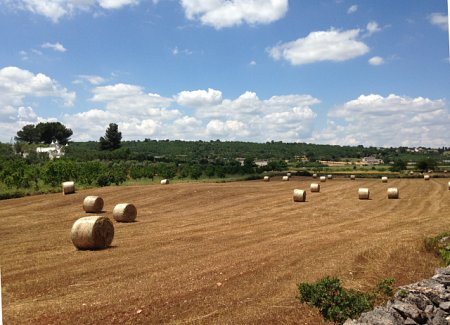 THe great puglia countryside, Italy, Apulia, wedding